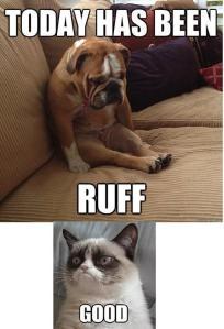 ruff-good
